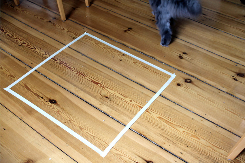 kätts Chefkatze Felina straft ihr Katzenquadrat mit höchster Verachtung