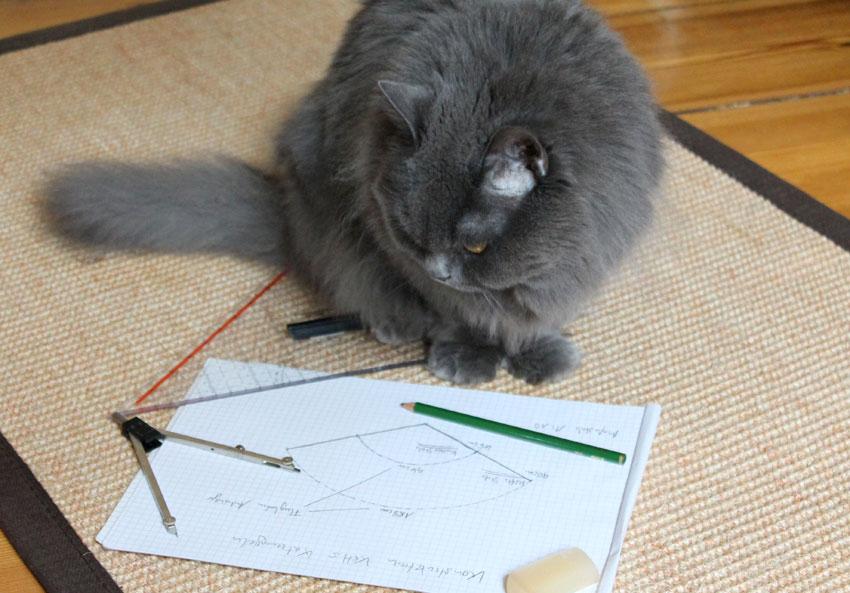 kätts Chefkatze Felina konstruiert kätts Katzenangeln
