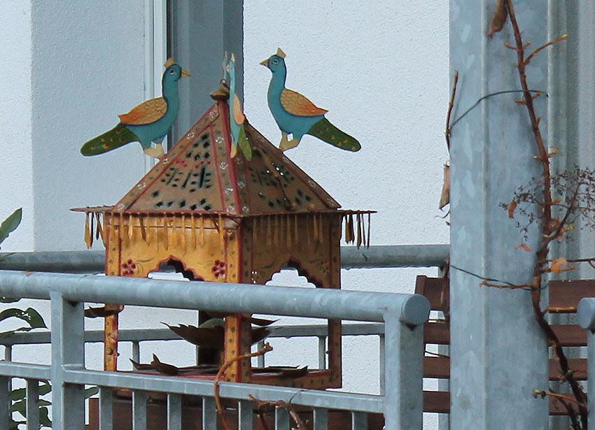 Der pompöse Vogelpalast - Provokation oder Katzenkino